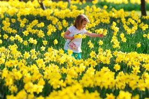 Sáu lý do để yêu mùa xuân nước Anh